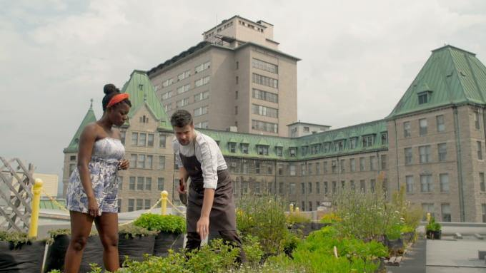 Oneika is on a homegrown rooftop garden with Chef Arnaud Marchand