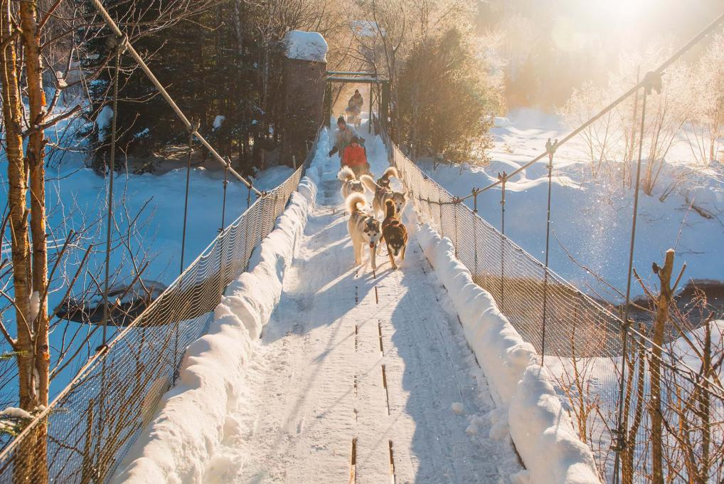 People in dog sleds cross on a suspension bridge over a river.