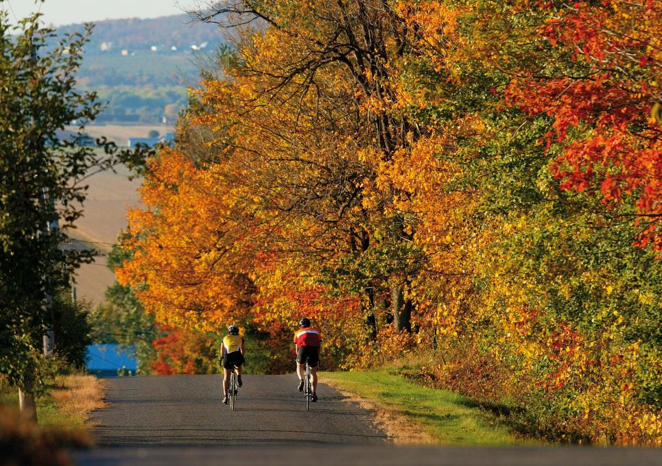 Cyclists in autumn