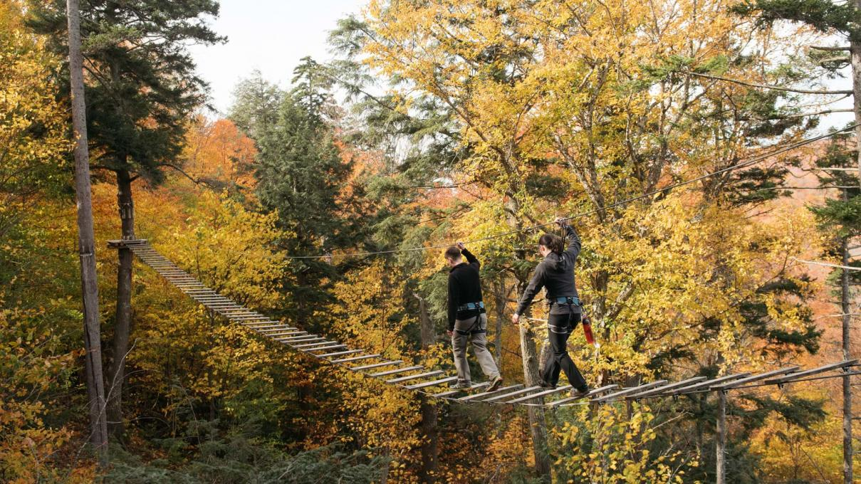 Tree Top Course at Station touristique Duchesnay