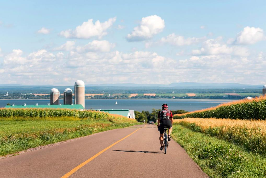 A cyclist rides a bicycle on a deserted road that runs alongside fields on the Ile d'Orleans.