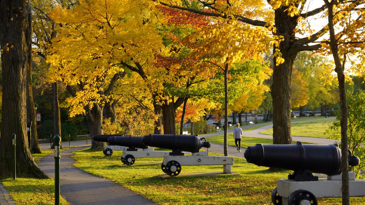 Cannons on the Plains of Abraham