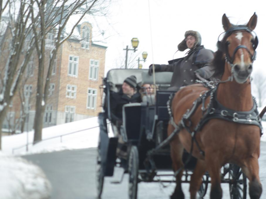 Couple in a Horse-Drawn Carriage Tour in the Old Québec