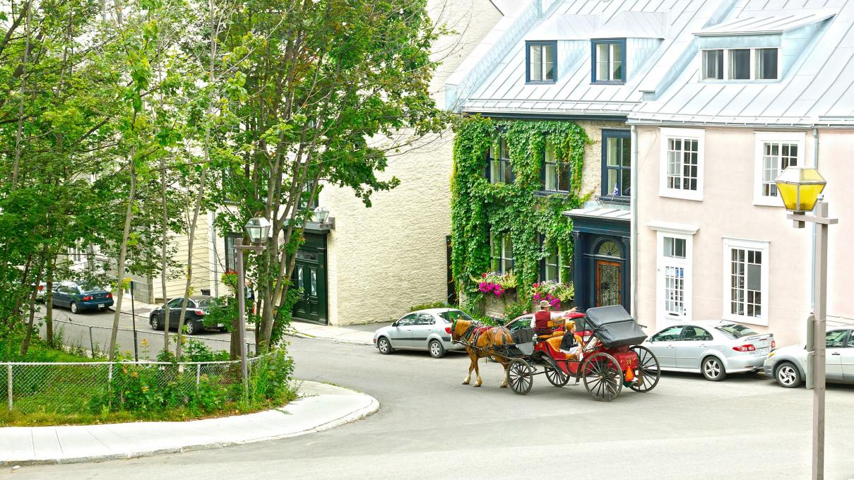 Horse-Drawn Carriage in the Old Québec