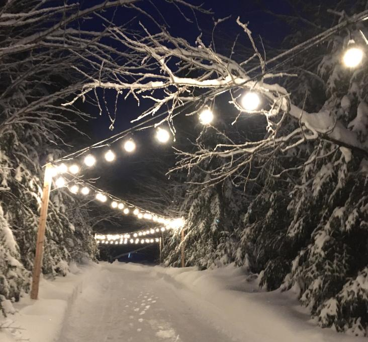 Illuminated icy trail in the evening in the Jacques-Cartier National Park.