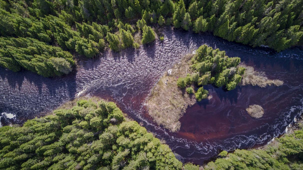 Aerial view of a river winding through the forest, in summer, in the Réserve faunique des Laurentides.