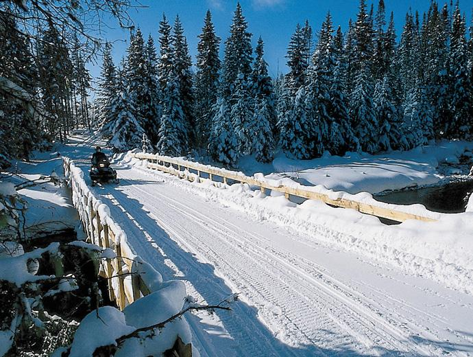 A snowmobiler in the Réserve faunique des Laurentides travels on a snowmobile trail and crosses a bridge that spans a river, in the snowy forest.