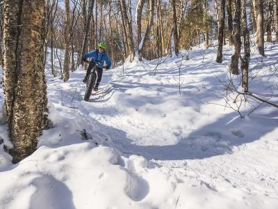 An outdoor enthusiast rides a fatbike, a bicycle with oversized wheels in the snowy forest.