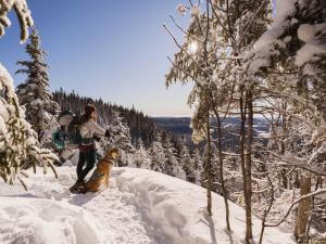 A hiker accompanied by his dog, in winter in a snowshoe trail in the Vallée Bras-du-Nord.