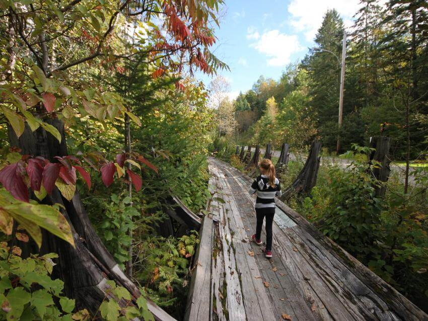 Young girl walking in autumn at Parc naturel régional de Portneuf